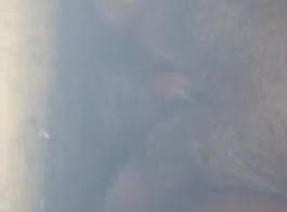 موقع تبيدي
