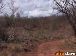 صور نيك محارم زنجيات أفريقيا