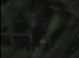 مونيك أفيلا و 7 أطفال جلام آخرين