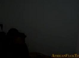 زب افريقي اسود هايج