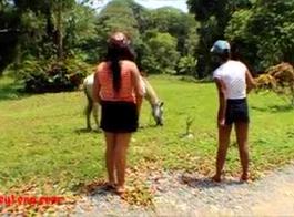 سكس حصان مع بناتنيك