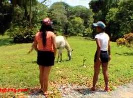 حصان ينيك بنت موقع