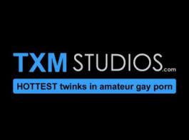هل المتحولين جنسيا ممثلين