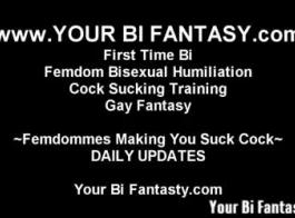 ثنائية فوتاناري الجنس الحسي مثلي الجنس