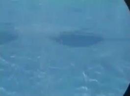 نمط شقراء تحت الماء اللسان.